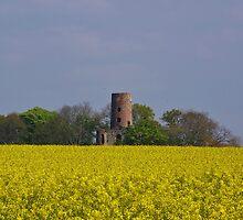Racton Ruins  by lezvee