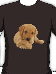 Labrador Puppy T-Shirt