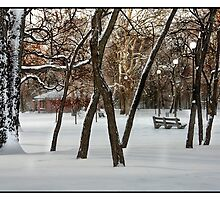 Humboldt Park In Winter by Harvey Tillis