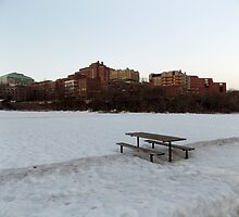 University of Minnesota by thedeathcats