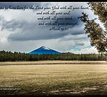 Bible Verse Mark 12:30 by DianaBozart
