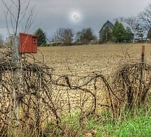 Springtime Beckons From Across the Field by wiscbackroadz