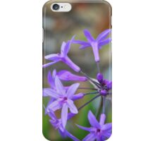 Botanical Art Print - Tiny Dancers By Sharon Cummings iPhone Case/Skin