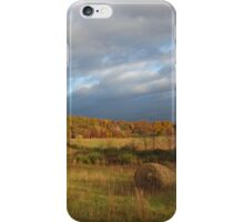 Farm Acres by Respite Artwork iPhone Case/Skin