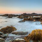 Seascape at Sachuest Point Wildlife Refuge by mcdonojj