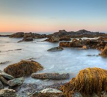 Seascape at Sachuest Point Wildlife Refuge by Joshua McDonough