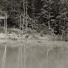 Red pond in black and white by GWGantt