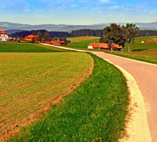 A road, a village and summer season | landscape photography Sticker