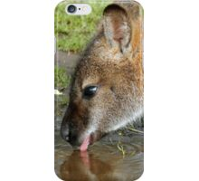 Drinking Wallaby iPhone Case/Skin
