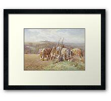 Resting in the Field Framed Print