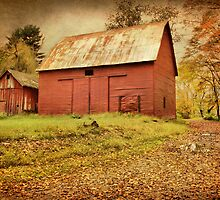 The Red Barns On Old Mine Road by Pat Abbott
