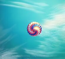 Take Me With You by Stephanie Rachel Seely
