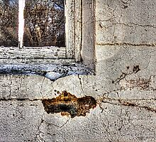 Window Detail Abandoned Red Barn by Roger Passman