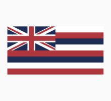 Hawaii State Flag by BailoutIsland