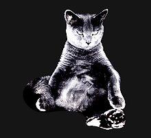 Big Fat Cat  by newbs