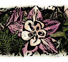 Artistic woodcut Colorado columbine flower by artisticattitud
