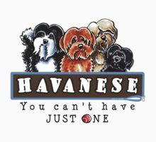 Havanese :: You Can't Have Just One Kids Clothes