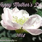 Happy Mother's Day;  La Mirada,  CA U.S.A. by leih2008