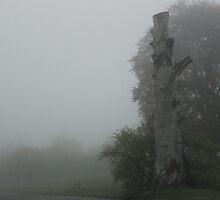Dead Tree on a Foggy Morning by Gilda Axelrod