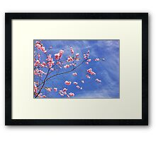 Cherry on top Framed Print