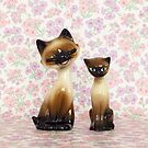 Kitsch Cats by Candypop