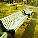 Cold white bench.  by ALEJANDRA TRIANA MUÑOZ