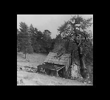 Fred Heaps Cabin 1910. by CanyonWind