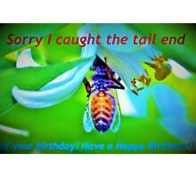 Bee-lated birthday greeting Photographic Print
