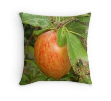 PILLOW / tote bag 47 Throw Pillow