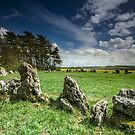 The Rollright Stones in Spring by Angie Latham