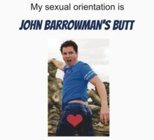 My sexual orientation by LokiOfCamelot