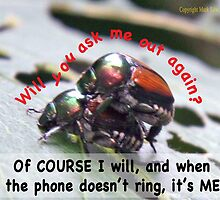 When you're waiting by the phone, and the phone doesn't ring, it's me! by Mark Edw Lodge