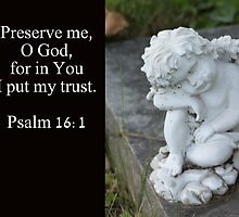 Preserve Me by StillBeauty