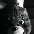 Mr. Bear by Trish Mistric