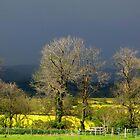 Stormy Skies by Caroline Anderson