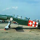 Pilatus P-2 J-108 G-BJAX at Biggin Hill by Colin Smedley