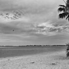 Morning at Cape Coral Beach  by John  Kapusta