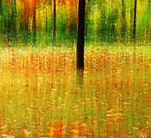 Artscape.........The Leaves by Imi Koetz
