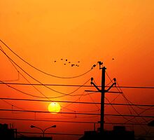At Dawn In Lucknow by SameerSpics