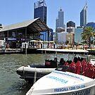 Let's go for a Boat Ride! by Margaret Stevens