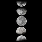 Moon Phases by Julian Machann