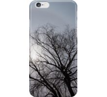 Sun Halo, Trees And Silver Gray Winter Sky iPhone Case/Skin