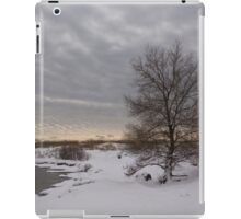Pearly Grays and Ripples on the Winter Beach iPad Case/Skin
