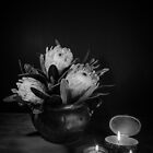 Proteas and Candle Light by Julie Begg