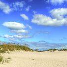 Fair Weather Along The Beach by Kathy Baccari