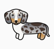 Chocolate And Tan Double Dapple Smooth Coat Dachshund by destei