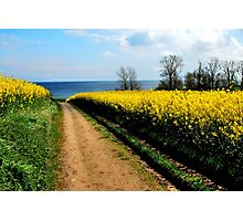 Walking towards the spring sea Photographic Print