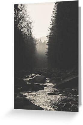 Morning river by Hudolin