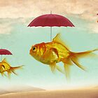 fish umbrellas by vinpez