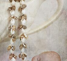Shell Baby by Kim-maree Clark